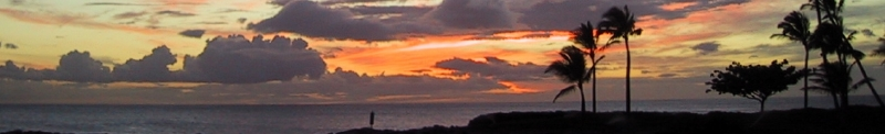 sunset_logo6